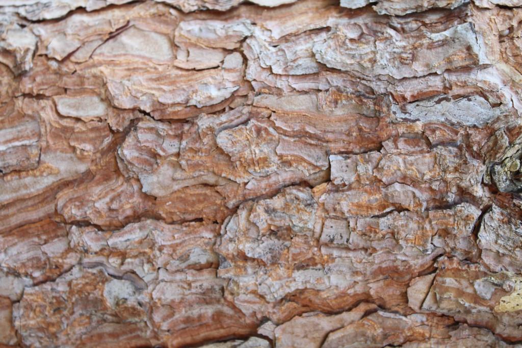 Artist Hangout - Rough Wood Texture 04